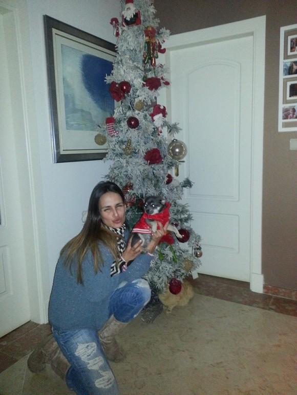 """Lúcia Garcia: """"A nossa árvore já está pronta e a vossa? Mostrem me a vossa árvore..."""""""