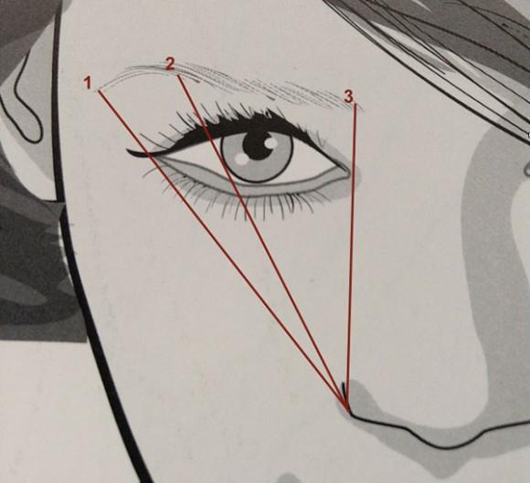 Para determinar o começo e o fim da sobrancelha basta imaginar uma linha reta ligando o canto externo do nariz com o canto interno do olho (traço 3) e outra linha ligando o canto externo do nariz com o canto externo do olho (traço 1). A parte mais arqueada deve ficar na linha 2, que liga o canto externo do nariz com o final da íris.