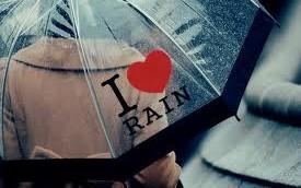 guarda-chuva capa