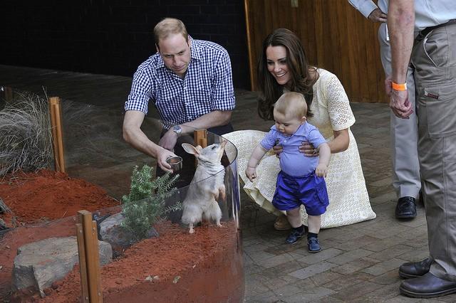 Kate William Zoo1