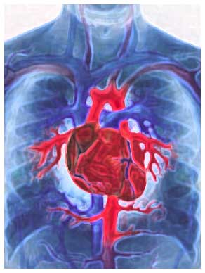 doenças circulatorias