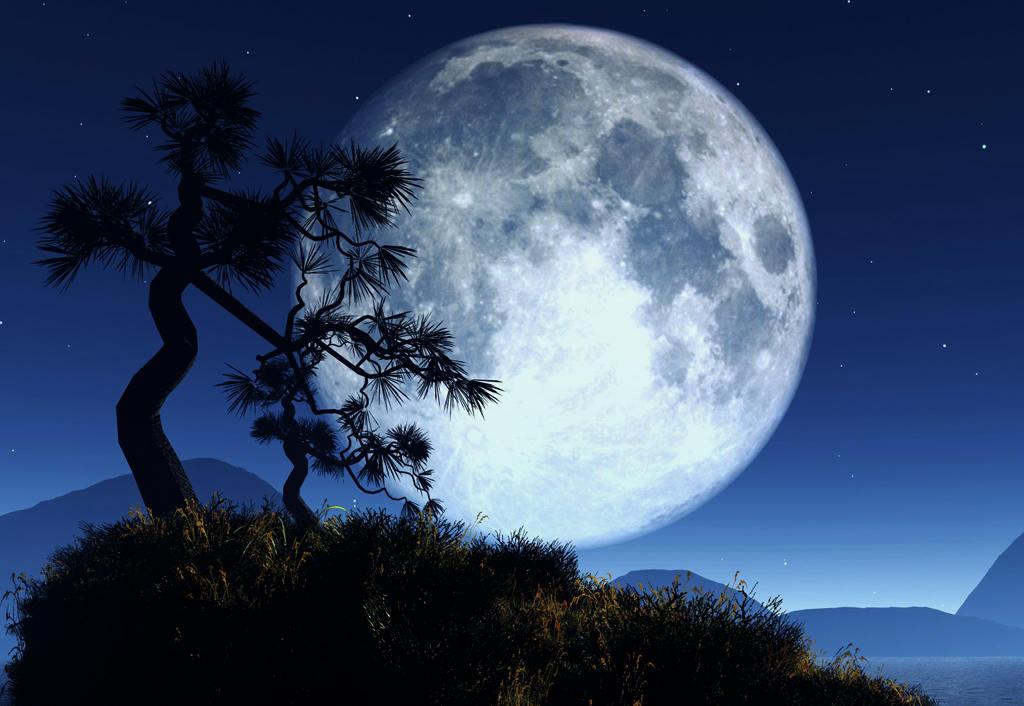 Resultado de imagem para lua cheia gifs
