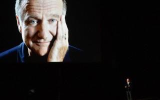 Robin Williams Emmy
