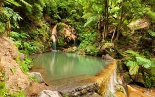 Caldeira Velha, S. Miguel, Açores - Estas termas estão escondidas no meio da floresta e fazem as maravilhas dos visitantes.