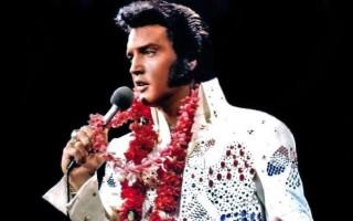 Elvis-Presley1-784x599