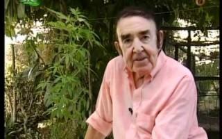 Sousa Veloso