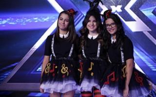 Factor X24