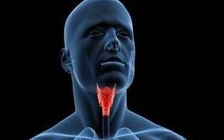 1333487239430-cancer-laringe