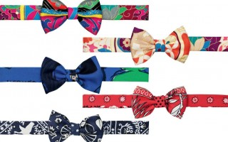 Hermes gravatas