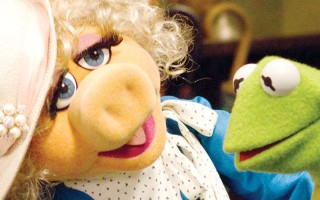 miss piggy sapo cocas