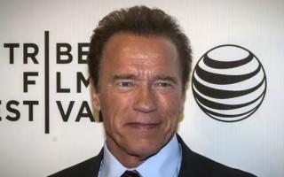 Arnold Schwarzenegger (@arnoldschnitzel)