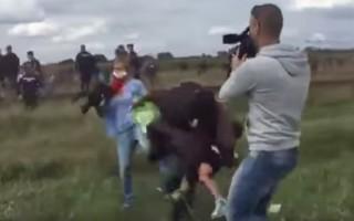 reporter refugiados