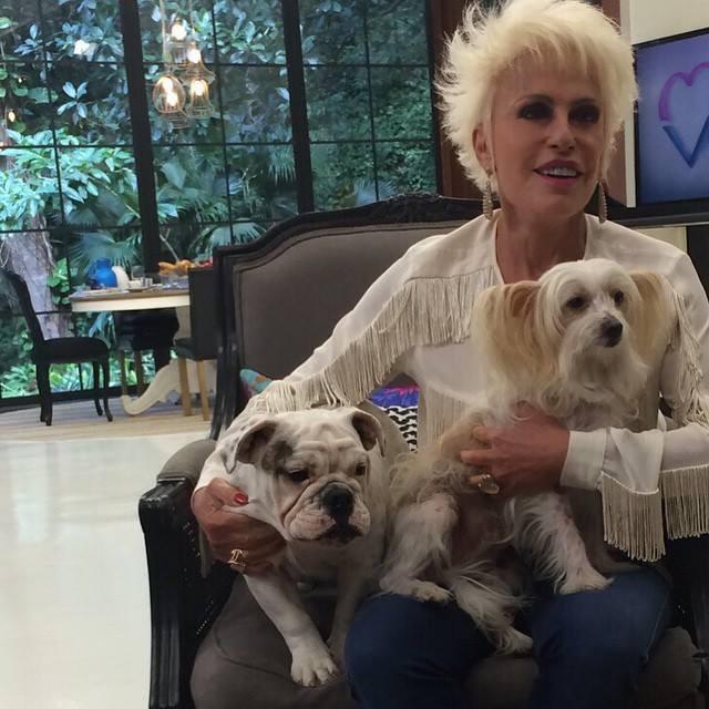 A apresentadora brasileira Ana Maria Braga também é uma apixonada por cães
