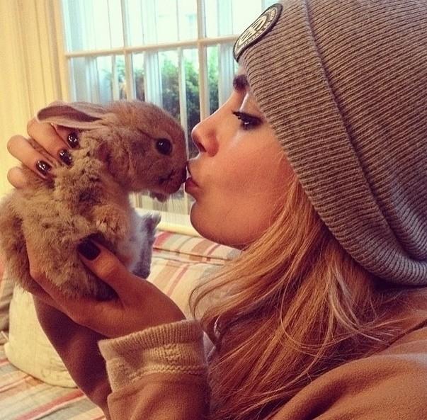 """Cara Delevingne é """"mãe"""" de uma coelhinha fofa chamada Cecil Bunny Delevingne. A paixão da modelo é tanta que ela criou uma conta no Instagram dedicada ao animal"""