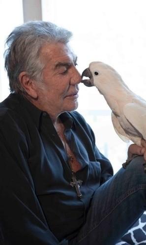Foi em Paris, em 2012, que Roberto Cavalli adquiriu o seu pássaro, chamado Oro --mesmo nome de uma de suas fragrâncias. Na época, ele apresentou o animal a seus seguidores no Twitter e brincou a dizer que ambos têm o mesmo nariz