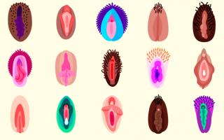 emoji-vagina