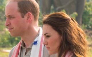 Will e Kate durante a visita ao Karizanga Park