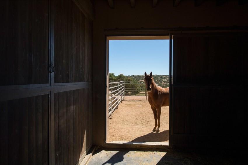 Rancho de Tom Ford em Santa Fe 13
