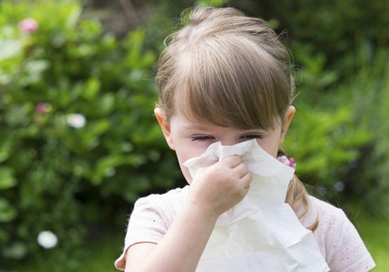 alergias-comuns