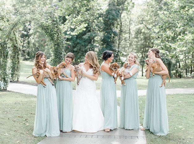 casamento-noiva-cachorrinhos