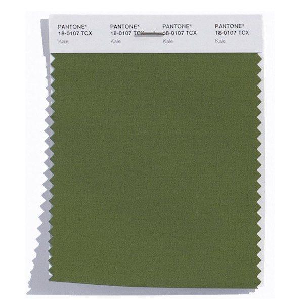"""Kale 18-0107: Tipo de couve. Considerado """"oxigenante"""" e que complementa outras cores"""