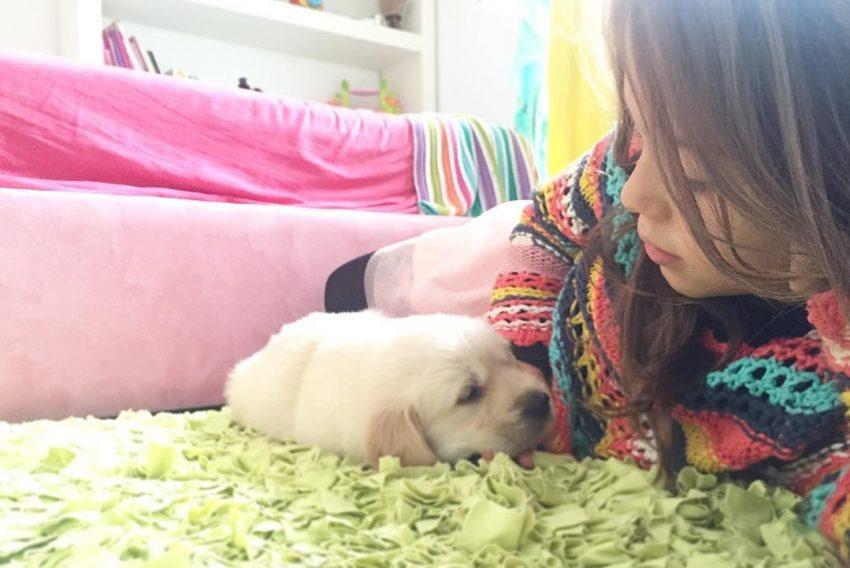 Caya, a nova cadelinha de Cláudia Vieira e da filha Maria