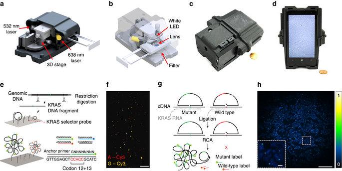 Smartphone sequenciou ADN para diagnosticar cancro