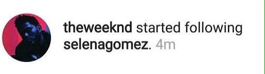 The Weeknd começou a seguir Selena Gomez no Instagram