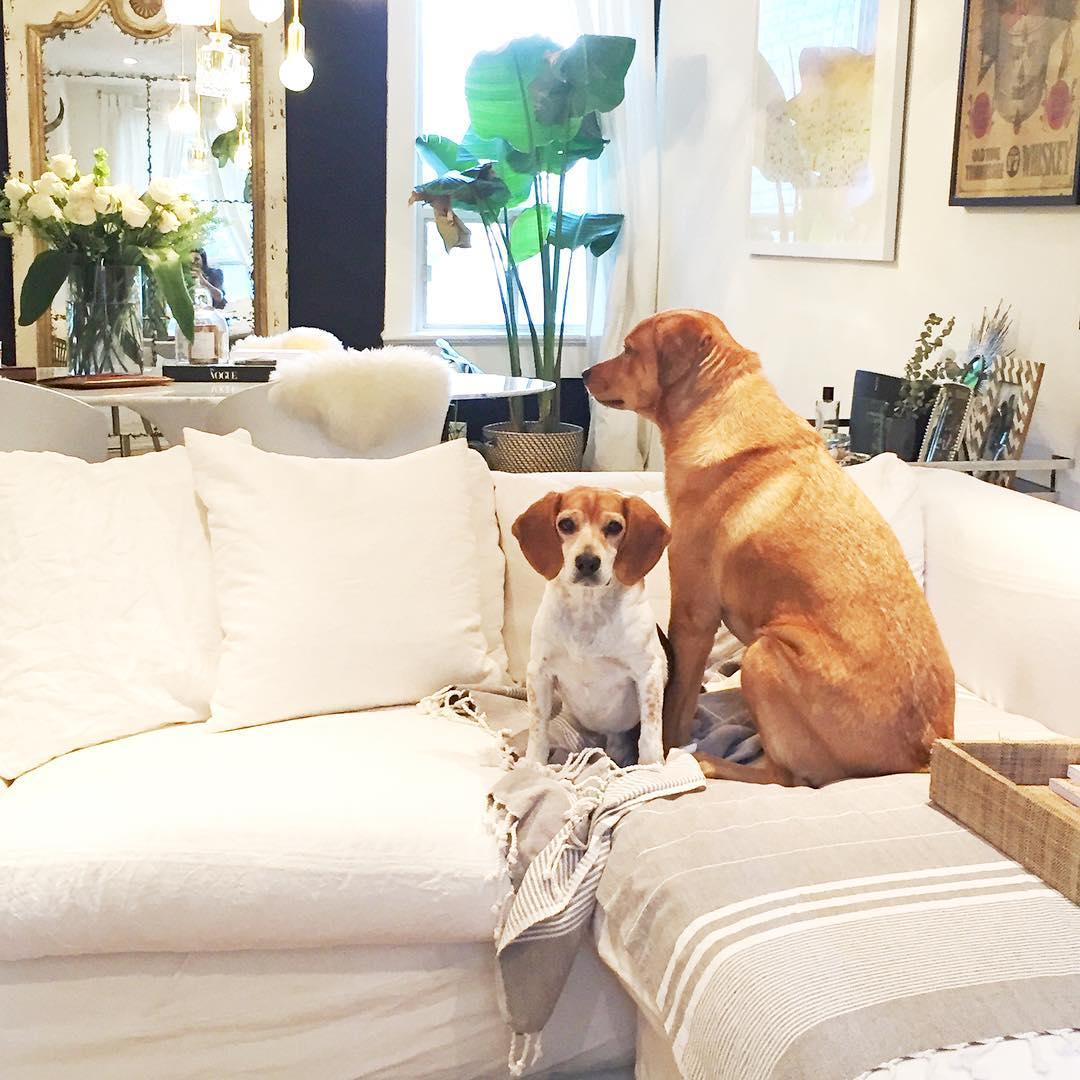 Pictures Images On Pinterest: Veja A Casa De Solteira De Meghan Markle